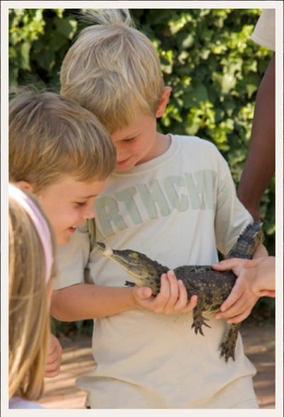 Le Bonheur Crocodile Farm two boys with baby crocodile