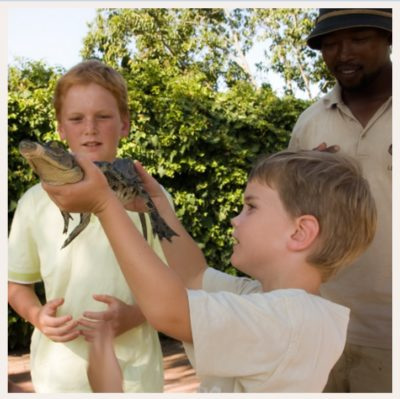 Le Bonheur Crocodile Farm small boy showing baby crocodile